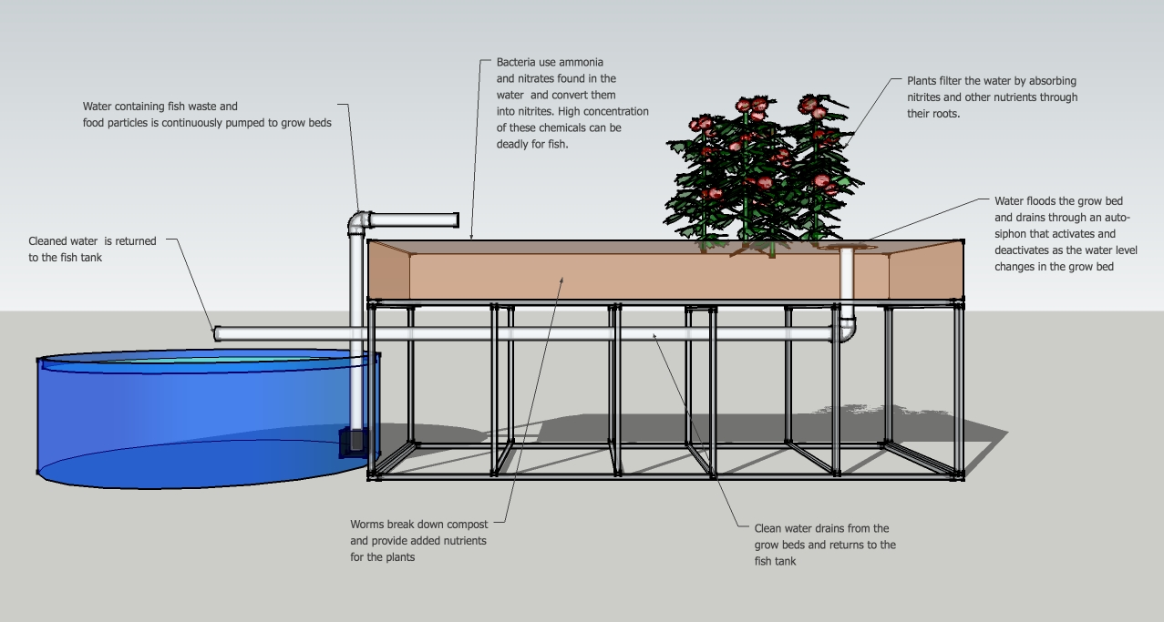 how to lower ph in fish tank aquaponics